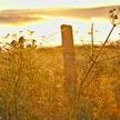 Eblouie par le soleil levant